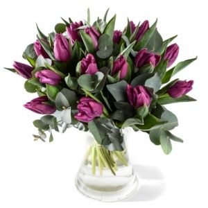 Bouquet of purple tulips with greens